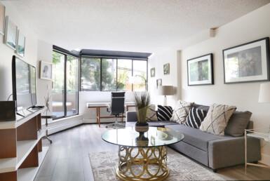 Fully Furnished Modern Living room